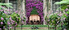 Orchid curtain in exhibition hall,  Longwood Gardens.