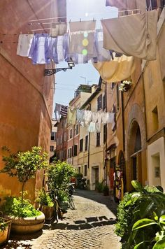 Trastevere, Roma.  Saw this scene as we walked the narrow streets.