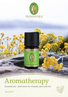 Essential oils - plant power for the body, spirit, and soul. Aromatherapy to entice the senses. Naturally pure and powerful, plants can beneficially affect hea… Do Everything, Immune System, Uae, Aromatherapy, Health Care, Essential Oils, Fragrance, Essentials, Spirit