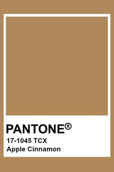 Pantone Swatches, Color Swatches, Pantone Colour Palettes, Pantone Color, Colour Pallete, Colour Schemes, Carta Pantone, Brown Pantone, Brown Aesthetic