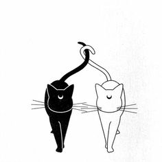 Luna and Artemis More