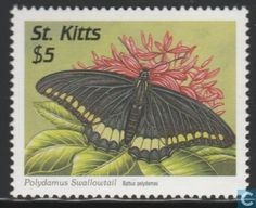Saint Kitts - Butterflies 1997 World Birds, Mail Art, Stamp Collecting, My Stamp, St Kitts And Nevis, Postage Stamps, Saints, Butterfly, Printables