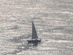 C'è una forma di #energia ancora più pulita del sole, ancora più rinnovabile del vento: è l'energia che non consumiamo (Art Rosenfield) http://blog.viaggiverdi.it/2014/02/barca-vela-delta-del-po/