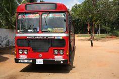 red bus / autobus czerwony