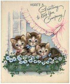three kittens vintage card More Vintage Birthday Cards, Vintage Greeting Cards, Vintage Christmas Cards, Vintage Ephemera, Vintage Postcards, Christmas Greetings, Vintage Valentines, Vintage Pictures, Vintage Images