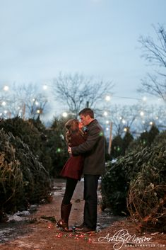 winter engagement photo shoot Christmas tree lot Christmas lights St. Louis, MO Ashley Mansur Photography www.ashleymansur.com
