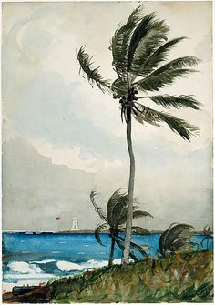 Winslow Homer  (American, Boston, Massachusetts 1836–1910 Prouts Neck, Maine), Palm Tree, Nassau, 1898. Watercolor and graphite on off-white wove paper, 21 3/8 x 14 7/8 in. (54.3 x 37.8 cm). The Metropolitan Museum of Art.
