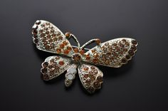 crystal brooch - Butterfly - brown