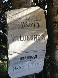 12 Great Hikes in 12 Washington Wilderness Areas