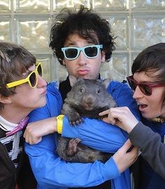 This wombat gets to be an honorary member of the extremely cute band The Wombats because they are named after him. Obviously, the boys have good taste Soft Grunge, Grunge Style, Le Happy, Dr. Martens, My Favorite Music, My Favorite Things, Music Journal, The Wombats, I Dont Like You