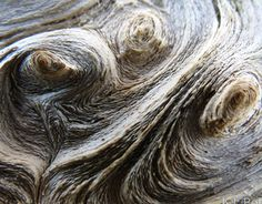 """Check out new work on my @Behance portfolio: """"Waves of Wood Grain"""" http://be.net/gallery/36192143/Waves-of-Wood-Grain"""