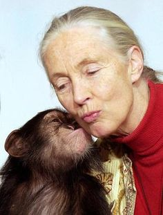 Jane Goodall is widely respected as the go-to global expert about chimpanzees. She's been studying the species since 1960 and has since won numerous awards for both environmental and humanitarian work. #icon