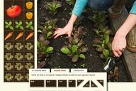 A website that plans your garden. You tell it where you live, it tells you what to plant and when, designs your garden for you, and gives you daily reminders of what to do.