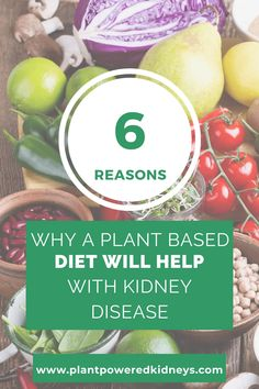 Plant-Based Diet for Kidney Disease: Why It's The Right Choice : Plant-Powered Kidneys | Jen Hernandez, Renal Dietitian Nutritionist Food For Kidney Health, Kidney Disease Diet, Kidney Recipes, Dietitian, Plant Based Diet, Plants, Kidney Disease, Plant Based Meals, Plant