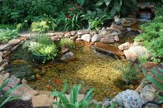 Photo by Sandy Sexton - New Pond added to our backyard in March.  We love It!   ...........click here to find out more http://googydog.com    ........P.S. PLEASE FOLLOW ME IN HERE @Yulia Bekar Bekar Bekar watson