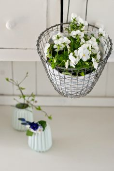 Minty House spring time, minty mint, Ib Laursen, flower in basket