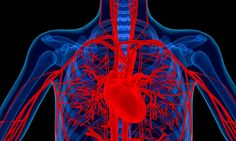 Researchers find that drug being tested for the treatment of rheumatoid arthritis may also hold the key to preventing aortic valve stenosis.