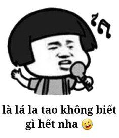 Tao, Meme, Memes