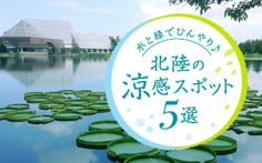 関西・北陸・せとうちエリアのおでかけ&観光情報【マイフェバ】 Web Banner, Banners, Web Design, Graphic Design, Summer Design, Banner Design, Layout, Logos, Creative