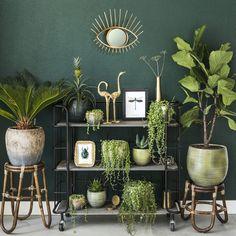 Home Decoration Do It Yourself Room With Plants, House Plants Decor, Plant Decor, Interior Design Living Room, Living Room Decor, Interior Colors, Interior Livingroom, Interior Paint, Interior Ideas