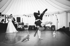 2 cats break dance & photobomb first dance wedding photos by Dorset wedding photographer, Linus Moran.  www.LinusMoranPhotography.co.uk  Linus Moran Photography Prospect House, Peverell Ave East, Dorchester, Dorset. DT1 3WE  01305 755663