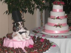 Wedding cake and Groom's cake.  The Groom's cake was an image of the Groom's Pet Dog.
