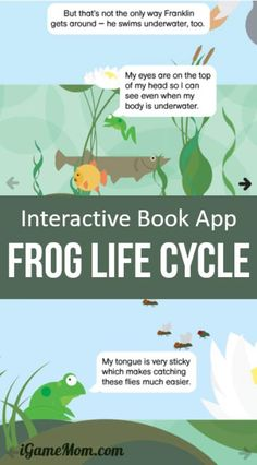 Interactive story book app about frog life cycle for preschool Learning Apps, Play Based Learning, Learning Resources, Kids Learning, Stem Learning, Story Book App, Biology For Kids, Lifecycle Of A Frog, Science Activities For Kids