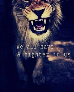 We all have a fighter in us