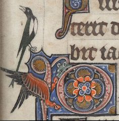 Medieval Border Dragon and Magpie, Add MS 24686, f.18r, c 1284-1316, Psalter, known as 'The Alphonso Psalter' (formerly known as 'The Tenison Psalter').
