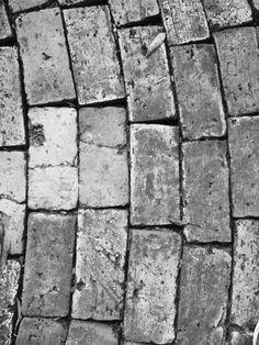 Escala tonal - por André Levi, 8C. Nesta imagem que retrata o chão podemos ver diferentes escalas de cinza. A foto foi tirada perto da árvore na frente de um banco. A foto retrata o chão que não damos destaque para ele, mas em preto e branco ele toma destaque e intensifica a tonalidade de preto e branco.