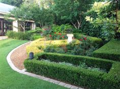 Formal Buxus hedge with a red roses around a sundial