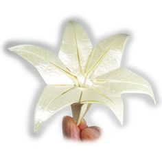 origami lily with six petals