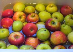 Family Balance Sheet: 20 Apple Recipes: Cheesecake, Muffins, Applesauce, and Many, Many More!