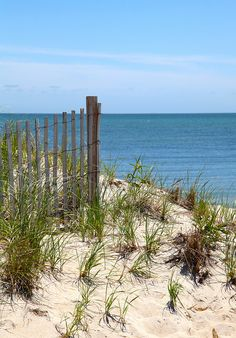 Cape Cod: Getting to the Beach   © Christopher Seufert Photography  http://www.CapeCodPhoto.net