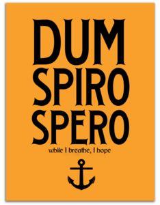 Latin Quotes, Latin Phrases, Latin Words, Words Quotes, Wise Words, Me Quotes, Latin Sayings, Wise Sayings, Qoutes