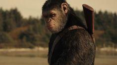 Invazia maimutelor online dating