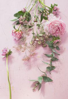 Ihanaa vappua toivottaa koko Piantareen väki!           Ranskalaiset vintage kuohuviinilasit: k ooPernu  Kukat: Kaivokukka Kamppi  Kuvau... Floral Wreath, Wreaths, Plants, Vintage, Home Decor, Floral Crown, Decoration Home, Door Wreaths, Room Decor