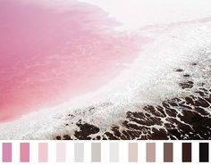 naturalpalettes:  Abstract aerial image of the lakeshore of Hutt Lagoon in Western Australia. The surreal colours are naturally occurring due to the strong concentrations of certain algae Steve Back- Pink Lakes