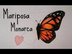 Como Dibujar y Colorear una Mariposa - YouTube