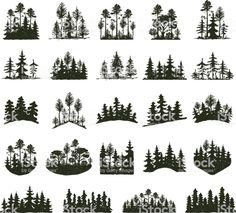 91815794 results for stock vector tree outdoor travel black silhouette logo coniferous natural badges, tops pine spruce branch cedar and plant leaf abstract stem drawing vector illustration panorama scene horizon decoration Pine Tree Silhouette, Black Silhouette, Silhouette Vector, Tree Silhouette Tattoo, Forest Silhouette, Kiefer Silhouette, Tree Illustration, Illustrations, Graphic Illustration
