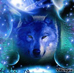 Galaxy Wolf ~SheWolf★