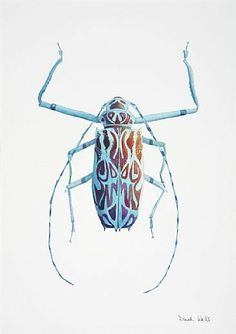 Harlequin Longhorn - longhorn beetle, harlequin beetle, insect by Dinah Wells Beetle Bug, Beetle Insect, Longhorn Beetle, Especie Animal, Cool Bugs, A Bug's Life, Insect Art, Beautiful Bugs, Hans Christian