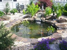 Jardins aquatiques : 101 idées de bassins et de fontaines extérieurs -