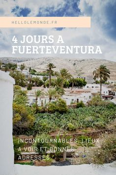 Programme, lieux à voir et bonnes adresse pour visiter l'île de Fuerteventura. Photos, Program Management, Places, Travel, Pictures, Photographs