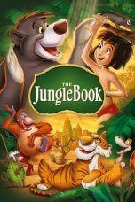 The Jungle Book (1967) The Jungle Book, Walt Disney, Dvd, Disney Characters, Fictional Characters, Disney Princess, Books, Movie Posters, Disney Birthday