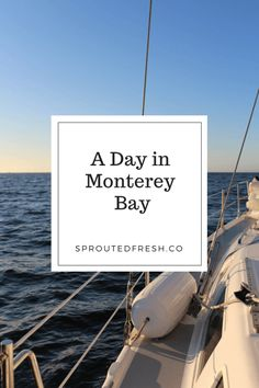 A Day in Monterey Bay   Travel and Adventure Ideas in Monterey Bay