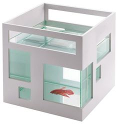 fishy condo!  exactly what swimmy, rock, & frank need!