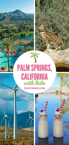 When you think of Palm Springs, you probably picture pretty palm trees, vast golf courses, and sparkling swimming pools. You will find these treasures and much more in this California desert city. Discover the 10 best things to do in Palm Springs with kids and teenagers, no matter what time of year you visit. #palmsprings #california #travelwithkids #familytravel California With Kids, Palm Springs California, California Travel, Southern California, Travel With Kids, Family Travel, Family Vacation Destinations, Dream Vacations, Vacation Ideas