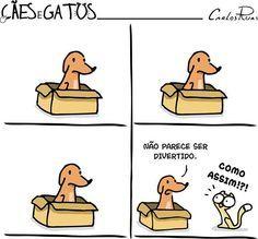 E Sobre o Divertimento de Cães e Gatos... Ilustração: Carlos Ruas