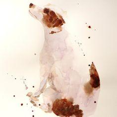 Alison Fennell的动物水彩画世界 鹦鹉 象 蜻蜓 英国 艺术 画 猫 猪 狗 水彩画 动物 Alison Fennell